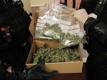 Cannabis seized in drugs raid