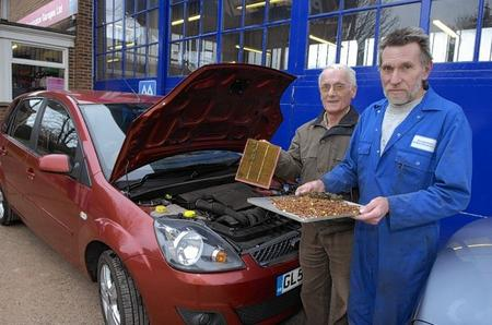Mechanic Brian Wilkins with car owner Alan Barling and the huge hoard of nuts found blocking the engine's air filter.