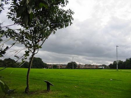 Claire Streader was murdered on Beverley Field, in St Stephen's