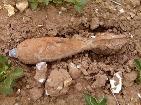 Unexploded bomb found in field off A20 between Folkestone and Dover