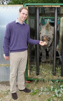 HRH Prince William meets Zawadi the rhino at The Aspinall Foundation's Port Lympne Wild Animal. Picture: Getty Images