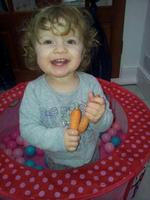 Tragic toddler Willow Bate, from Gillingham, died from meningitis