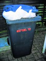 Bin collection changes
