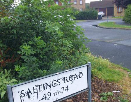 Saltings Road in Snodland
