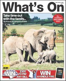 A herd of elephants at Howletts Wild Animal Park feature on this week's What's On cover